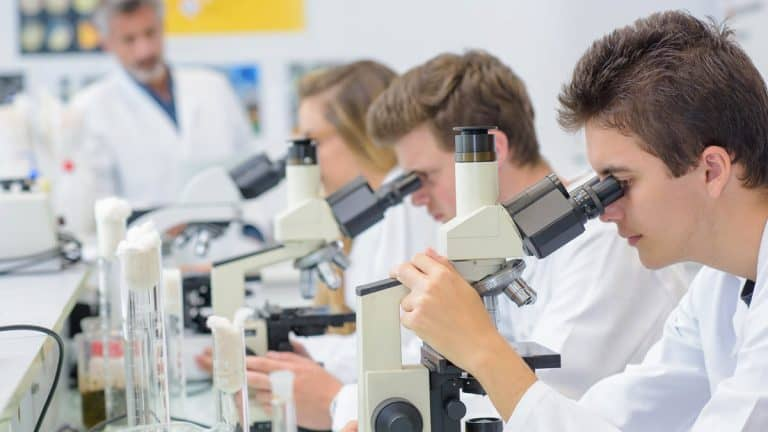 Best Microscope for a Teenager: Top 4 for Budding Biologists in 2021