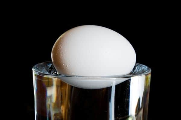 Floating egg on a glass of water