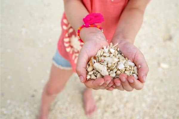 Child at the beach holding different stones and small corals