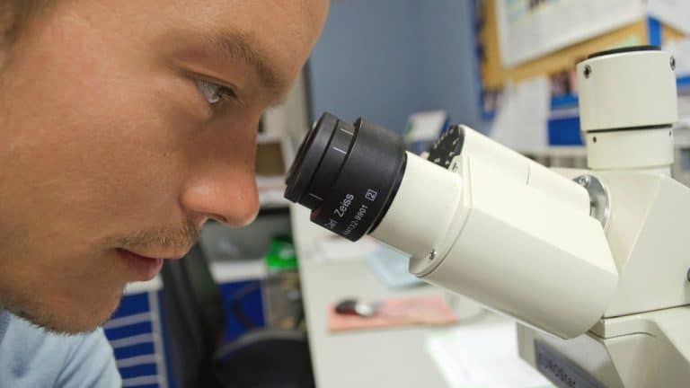 The Best Microscope for Viewing Bacteria (Top 4 Picks for 2021)