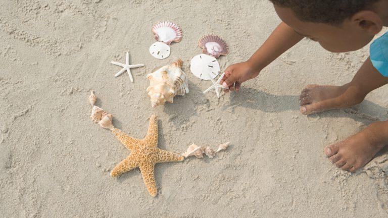 Oceans of Fun: Ocean STEM Activities for Kindergarten