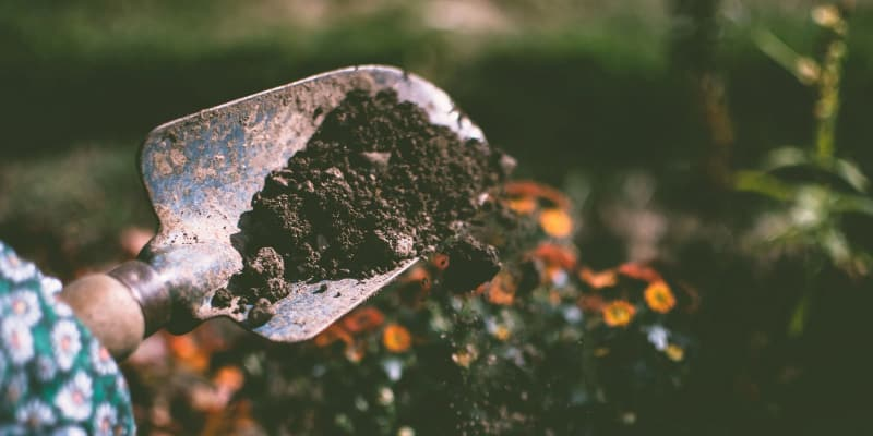 soil testing for a STEM project