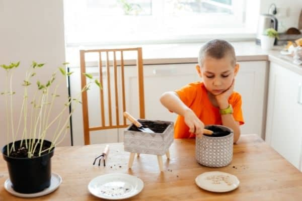 young boy at home with planting tools