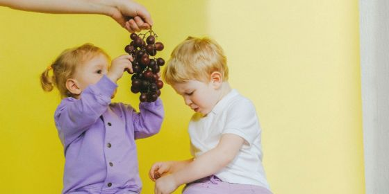 Turn Grapes Into Raisins for an at-home science experiment