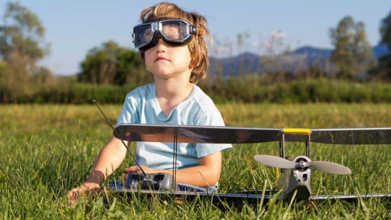Best Remote Control Plane (Our Top 9 Picks for 2021)