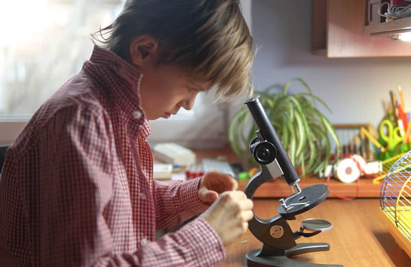 Microscopes make some of the best gifts for 12 year old boys and girls