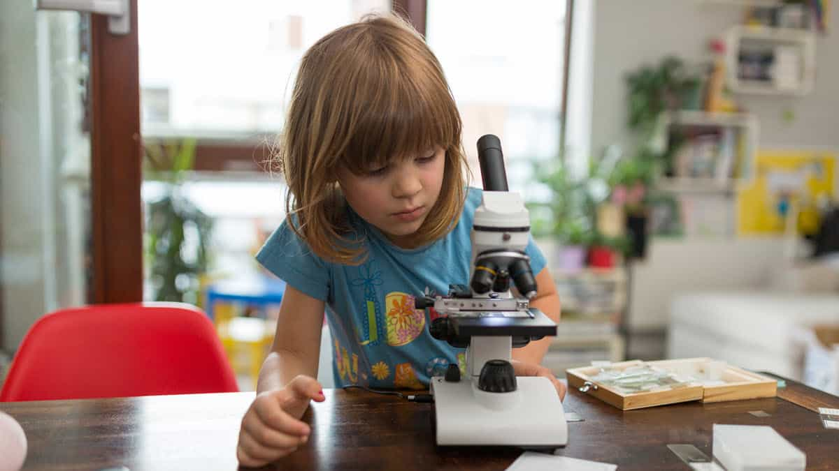 Best Microscope for Homeschool