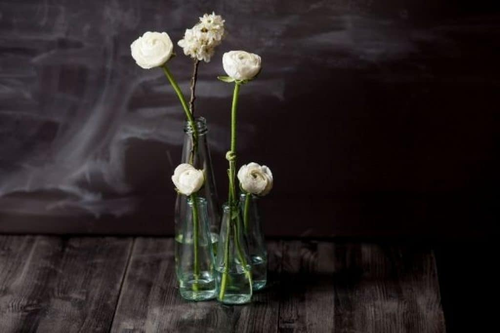 White flowers with stem in bottle with water