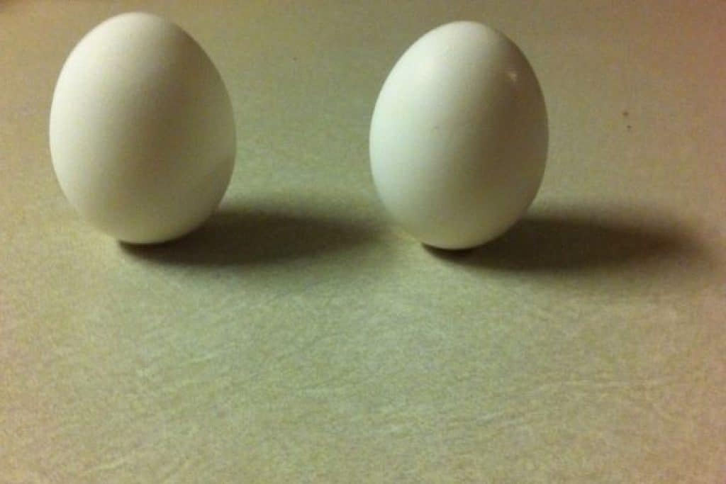 Two white eggs on top of a counter