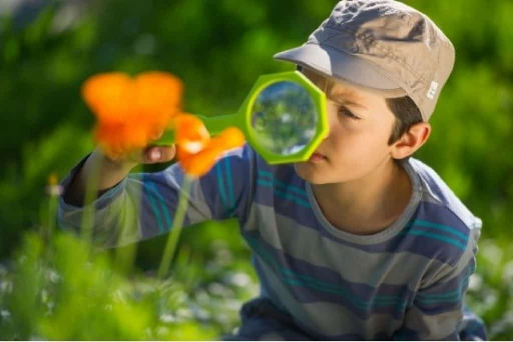 Young boy observing plants with magnifying glass