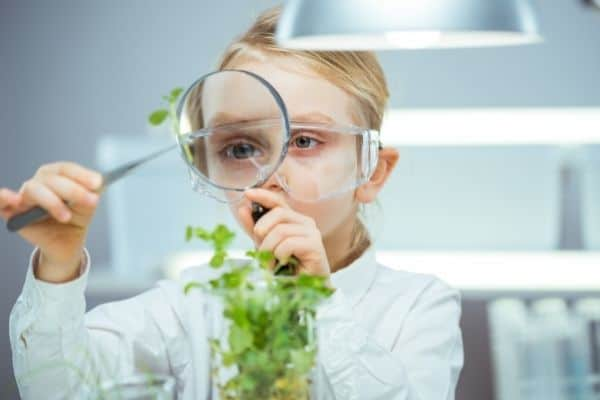 Child observing a plant with magnifying glass