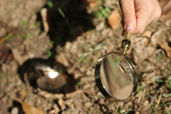 Child using a magnifying glass outdoors