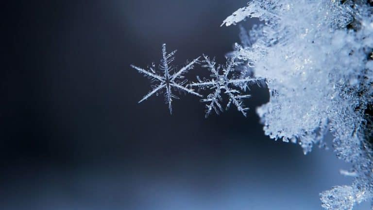 How To Preserve A Snowflake [4 Easy Ideas!]