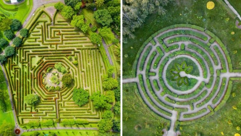 Maze vs Labyrinth — Let's Compare And See The Difference!