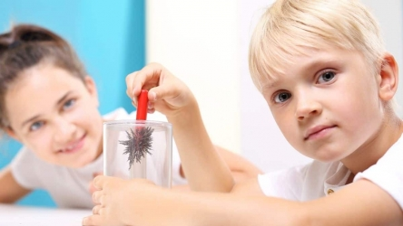 Physics Experiments For Kids [7 Awesome Ideas]